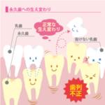 乳歯 生え変わり