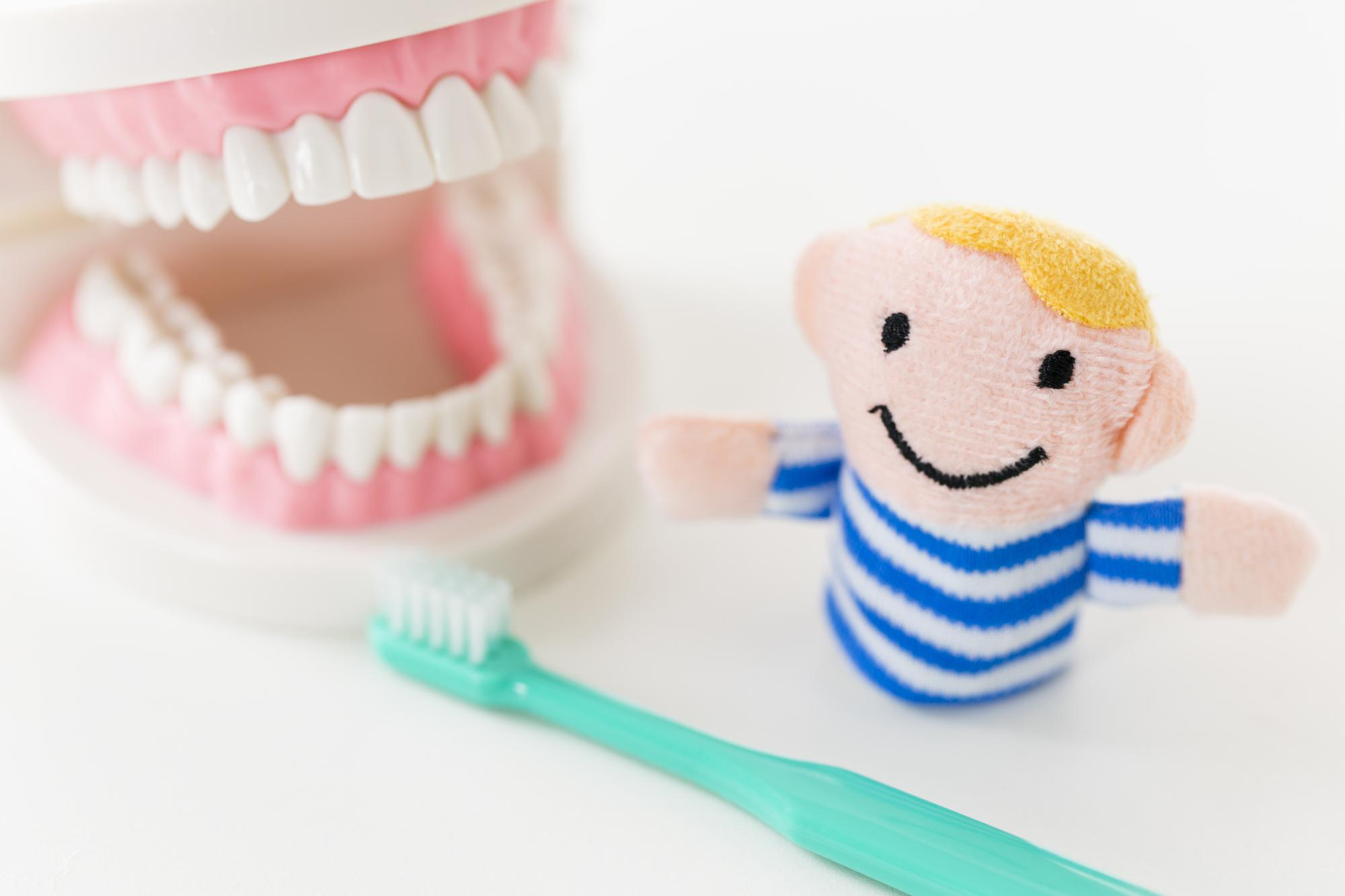 赤ちゃん 乳歯 虫歯