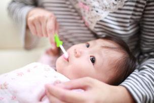 赤ちゃん 歯みがき 回数